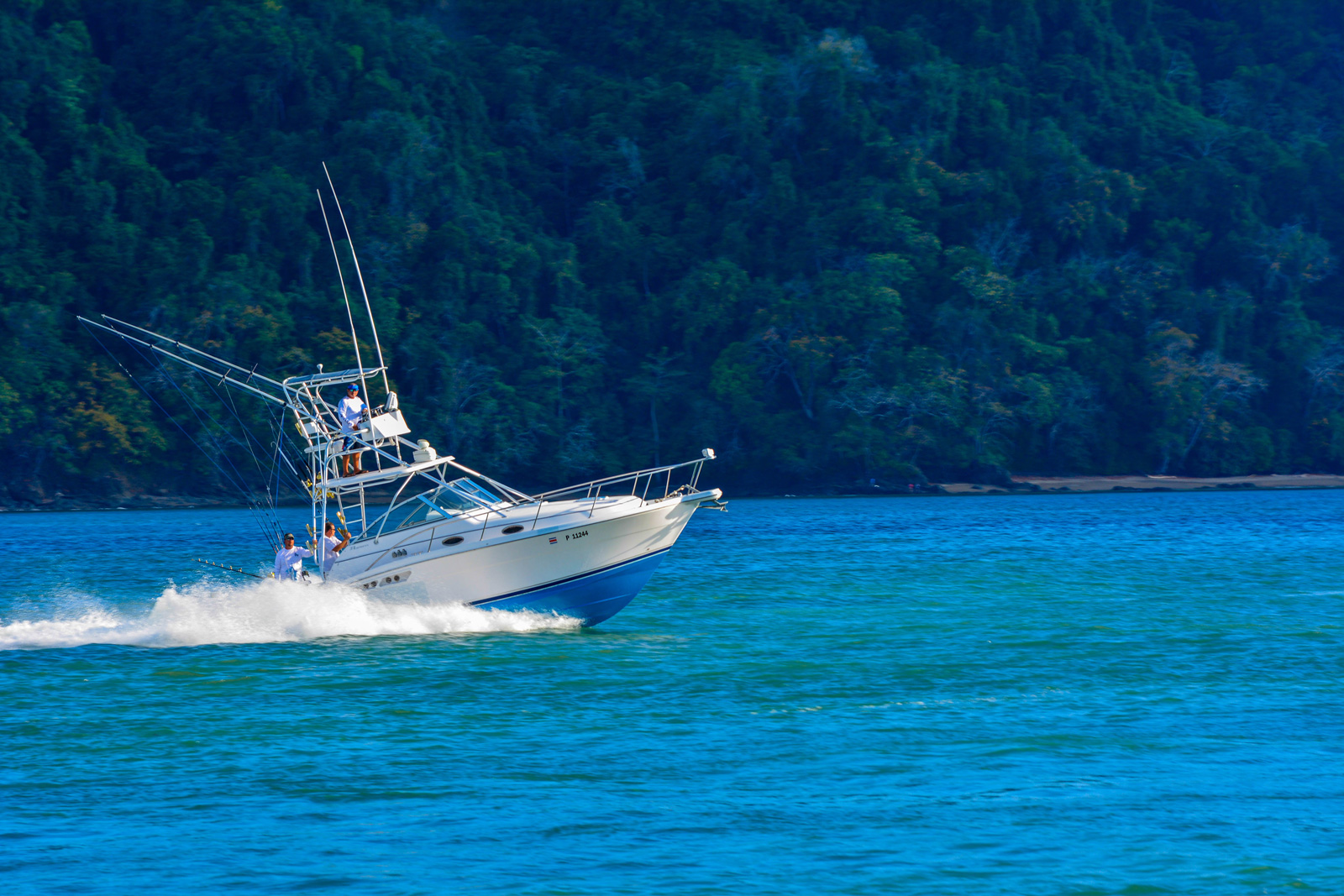 Costa rica los suenos quepos fishing charters book for Costa rica fishing charters